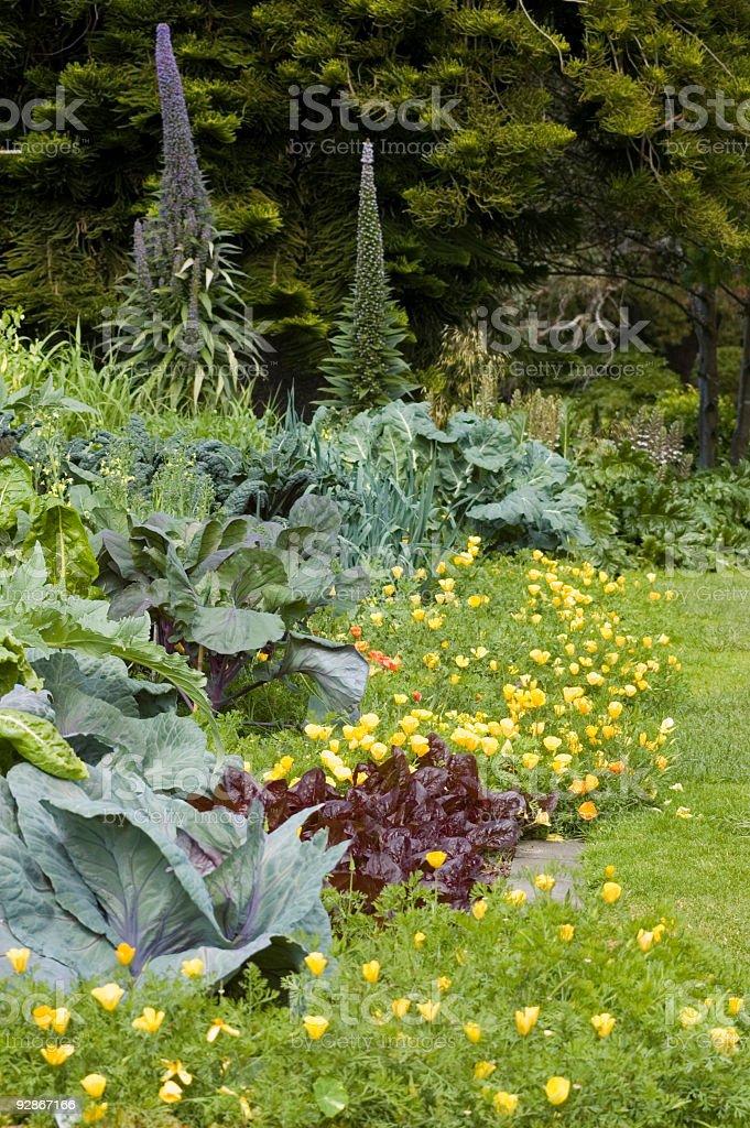 Flower & Vegetable Garden royalty-free stock photo