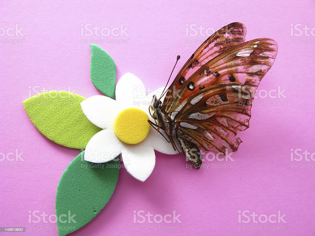 flower and butterfly royalty-free stock photo