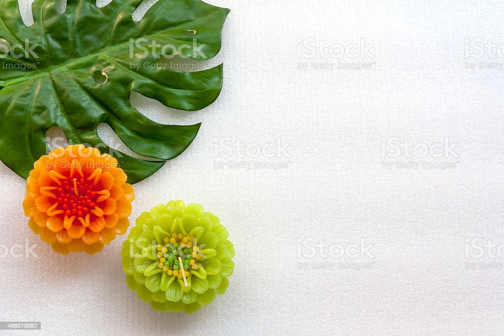 Flower and green leaf set on white background royalty-free stock photo