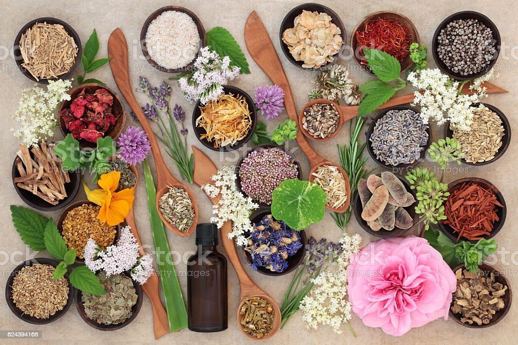Flower and Herb Selection stock photo