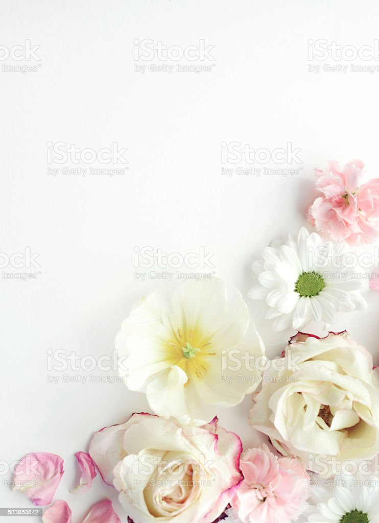 flower background composition flat lay stock photo