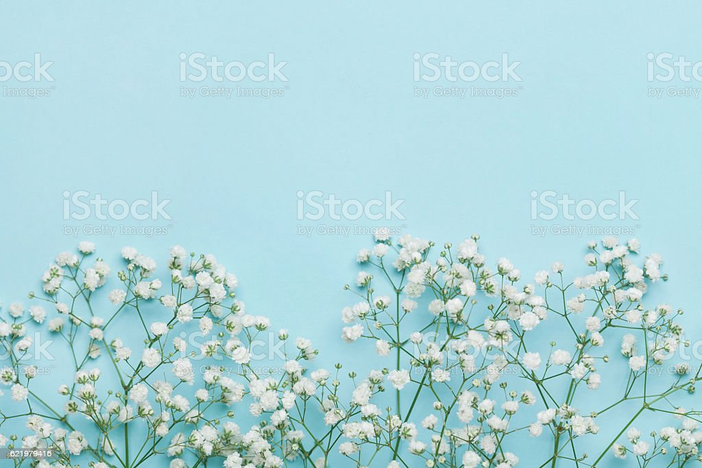 Flower background for holidays. Flat lay style. Copy space. Vintage. stock photo