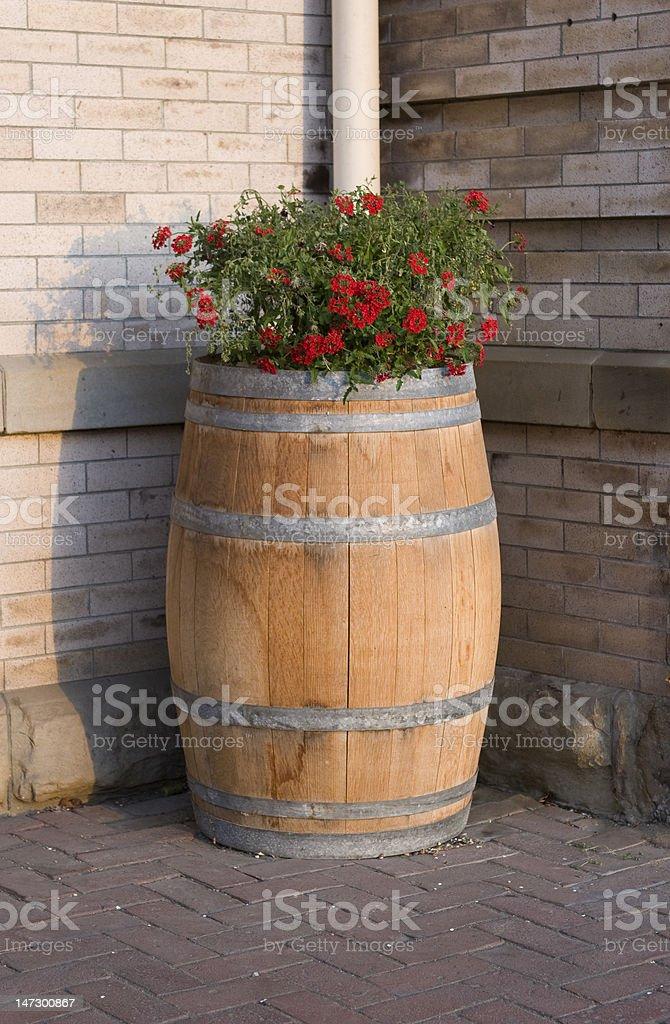 Flower Barrel royalty-free stock photo
