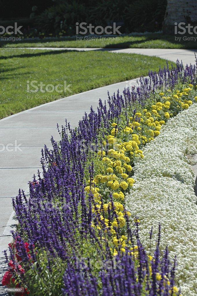 flower bed along winding sidewalk royalty-free stock photo