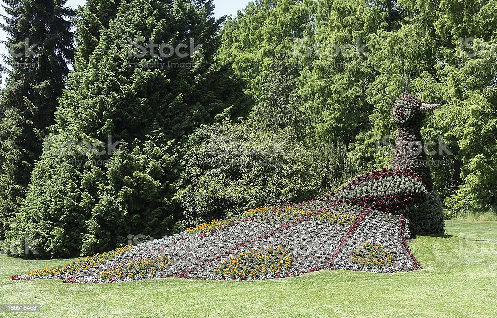 Flower bed, Germany stock photo