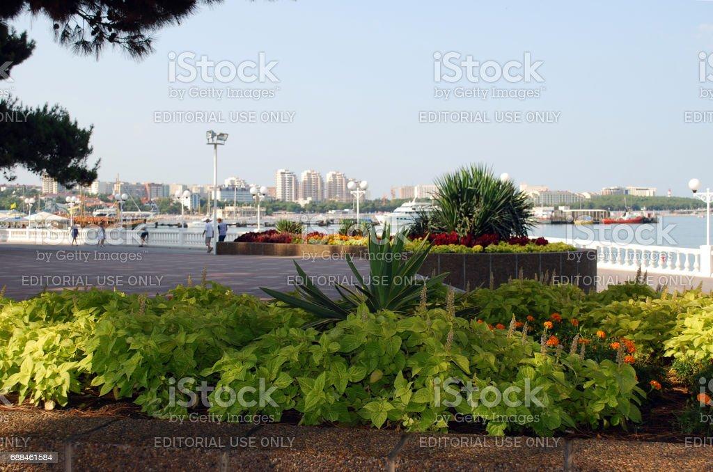 Flower beds as a part of landscape design on the Gelendzhik city embankment stock photo
