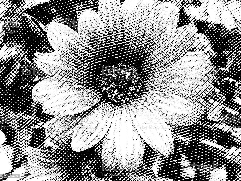 Flower black and white in vintage style engraving stock photo