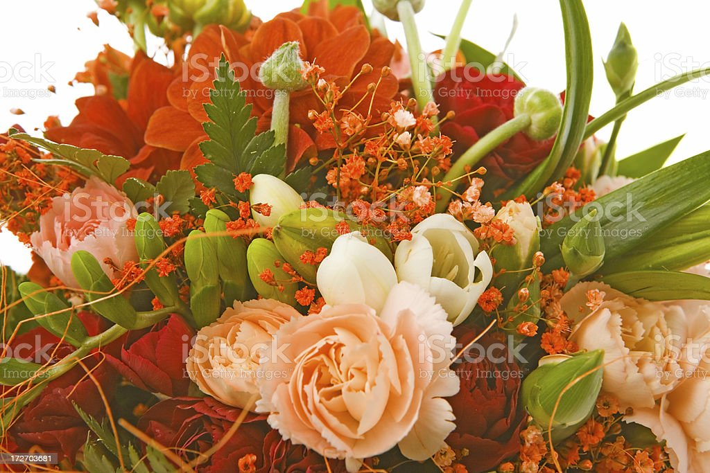 flower bouquet close-up on white background stock photo