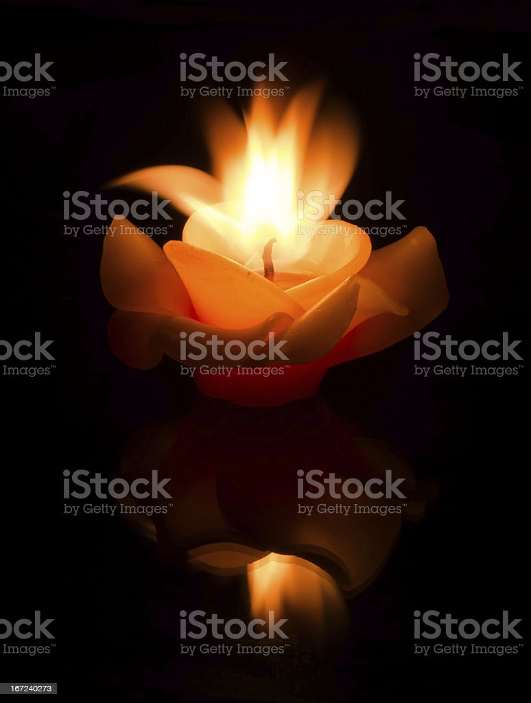 flower candle on fire royalty-free stock photo