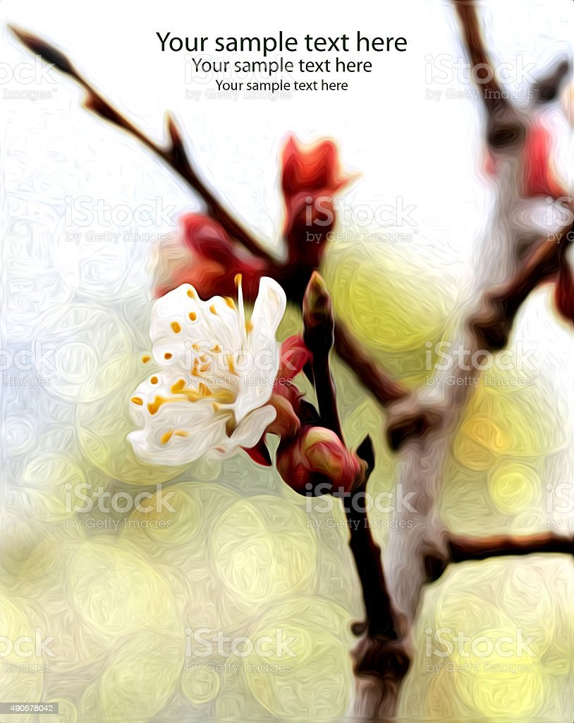 flower card design stock photo
