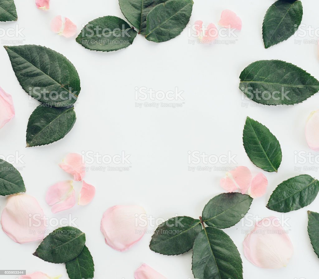 Flower ,composition flatlay stock photo