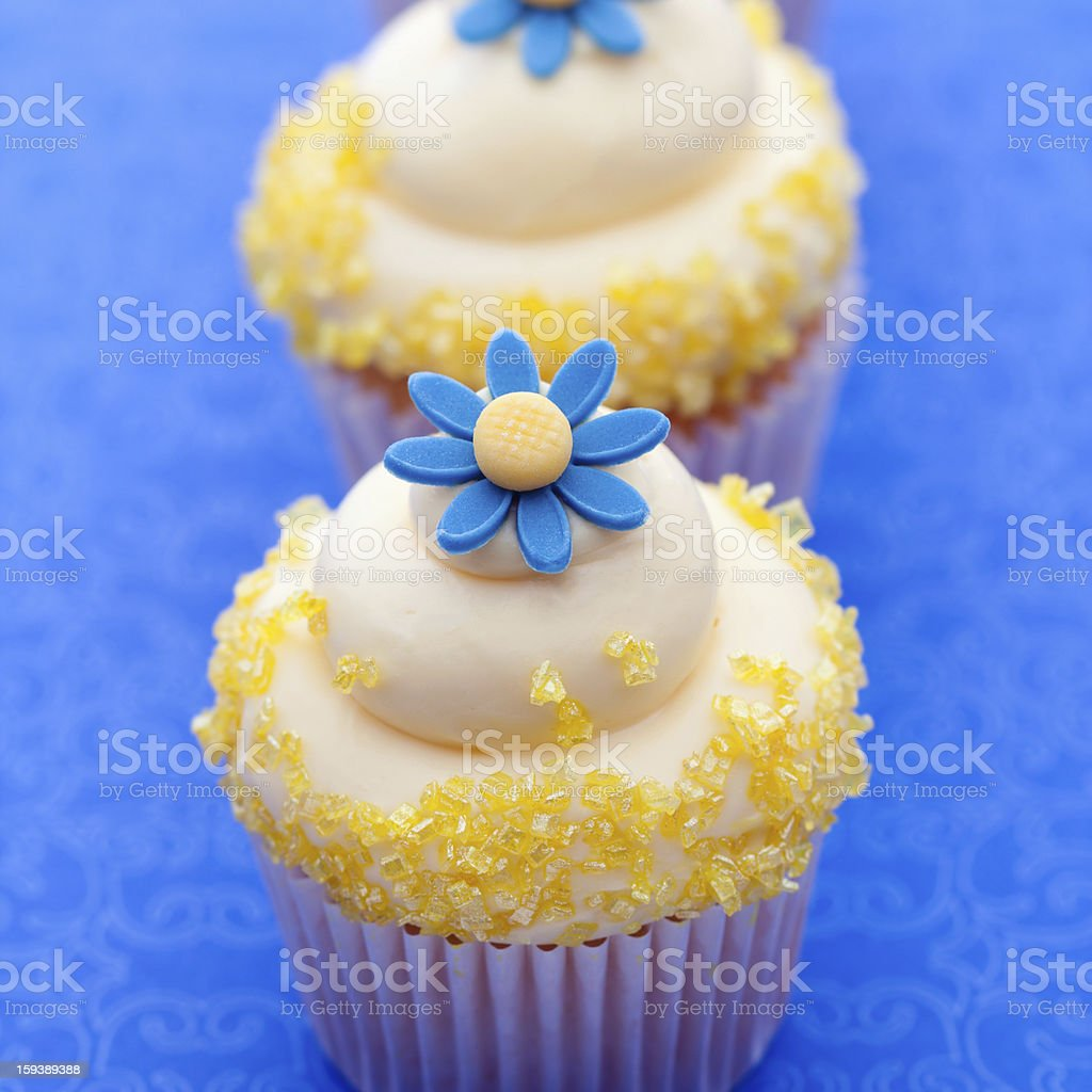 Flower cupcakes royalty-free stock photo