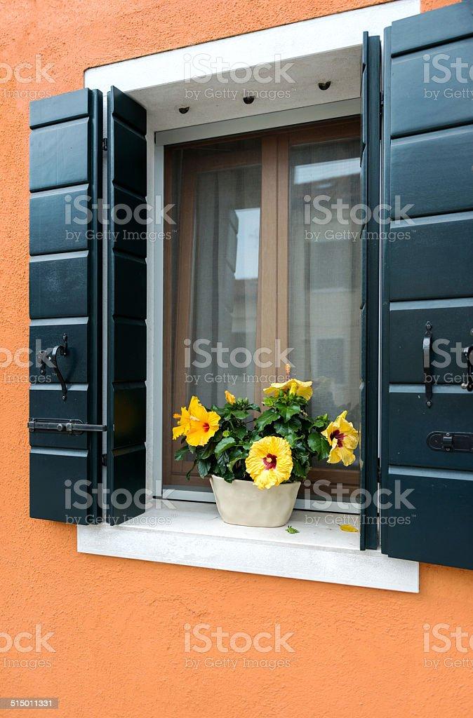 Flower Decorated Window stock photo