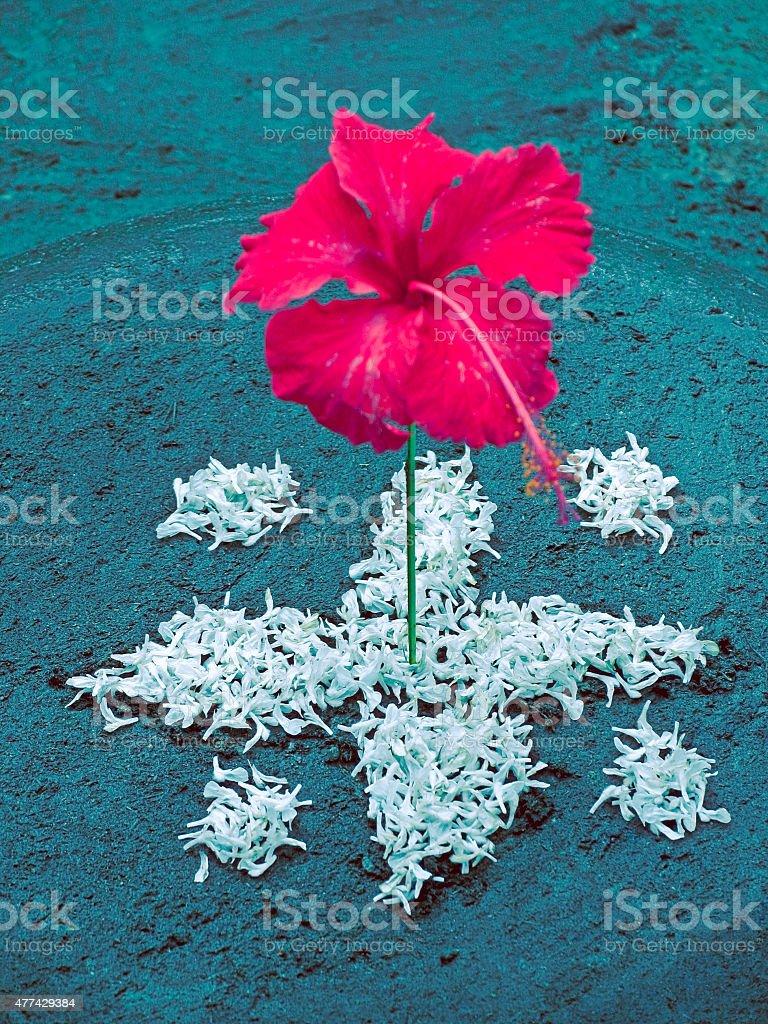 Flower decoration, during Onam festival stock photo