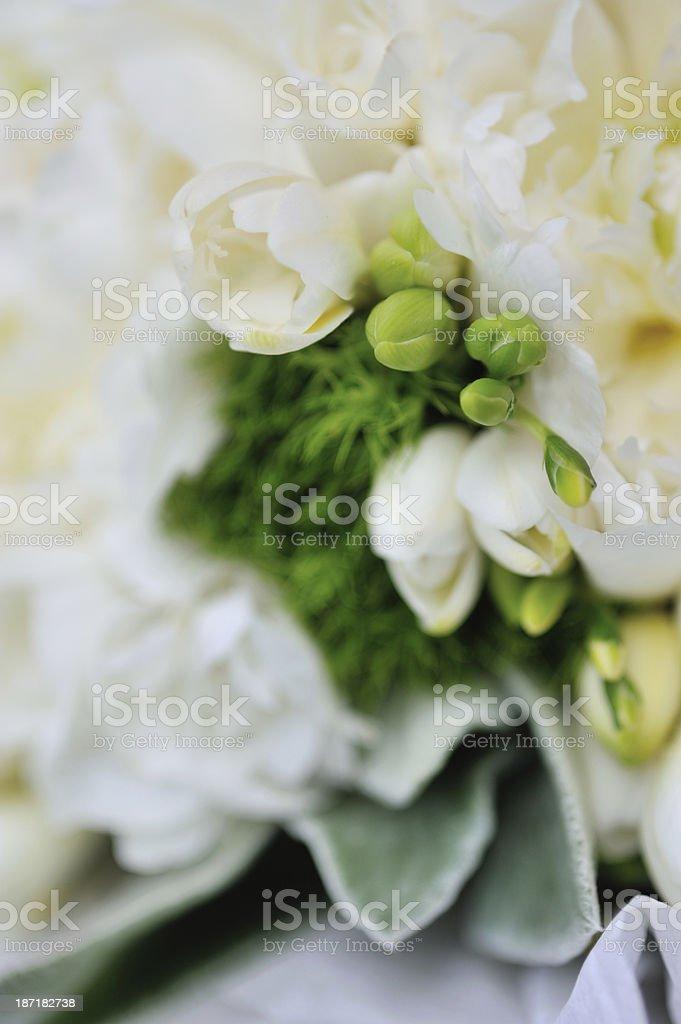 Flower Decoration royalty-free stock photo