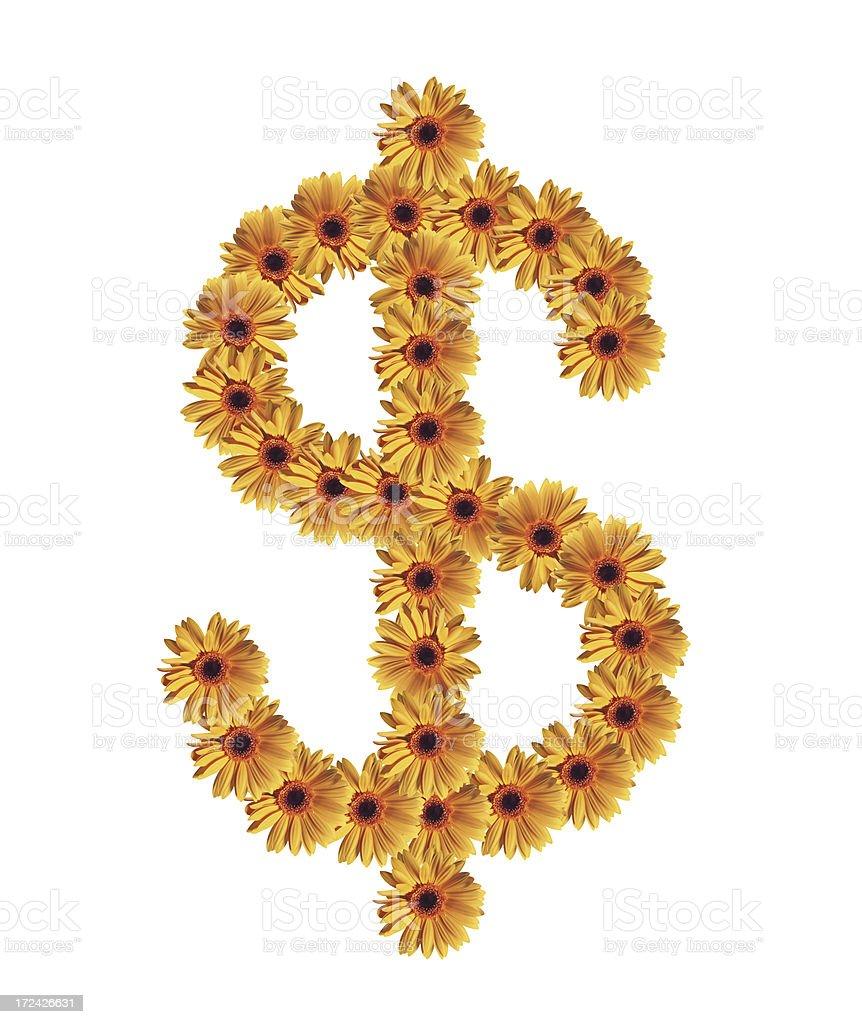 Flower Dollar Sign stock photo