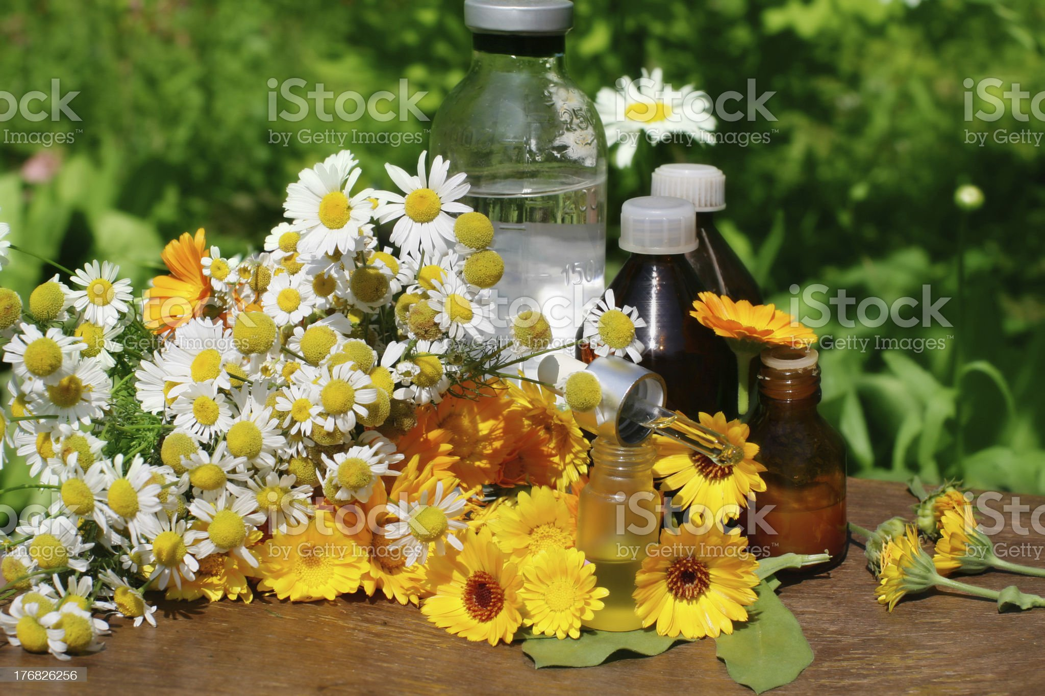 flower essential oil and tincture royalty-free stock photo