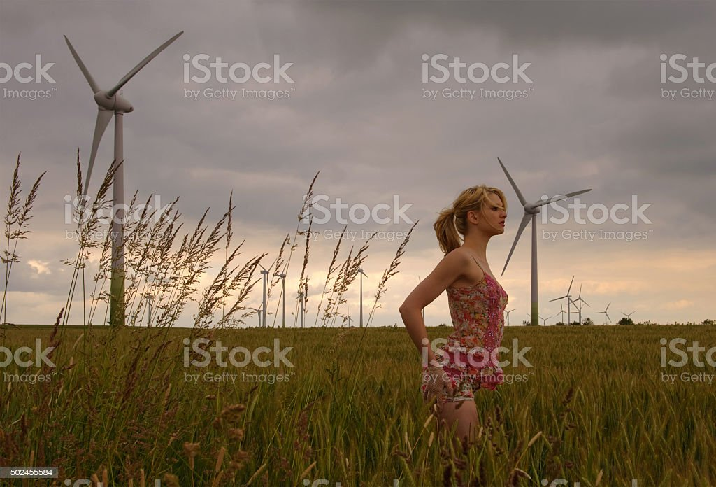 Flower Field Wind Park four stock photo