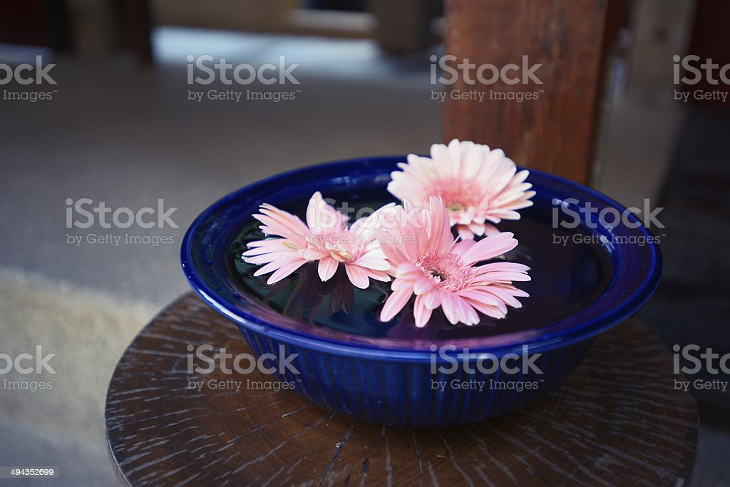 Flower Floating On Water royalty-free stock photo
