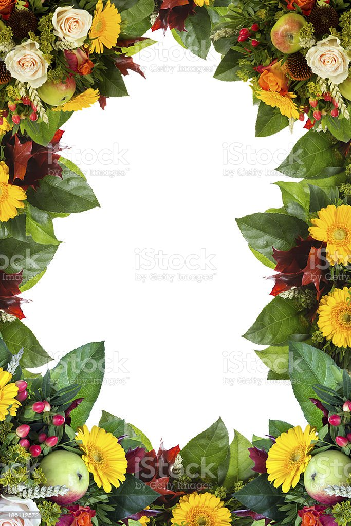 Flower Frame isolated on white royalty-free stock photo