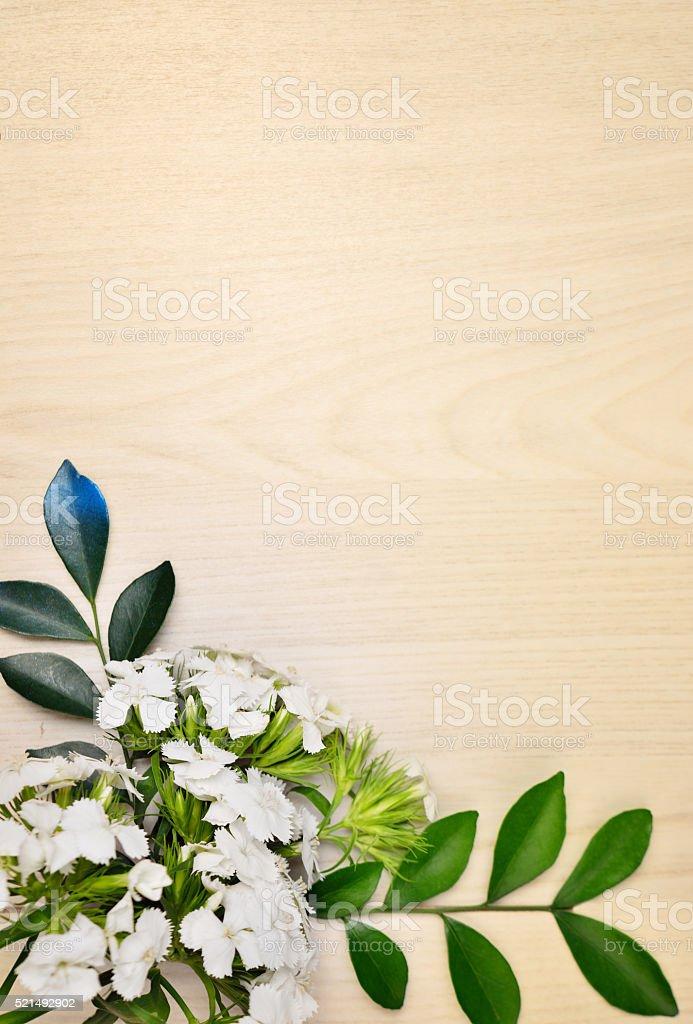Flower Frame stock photo