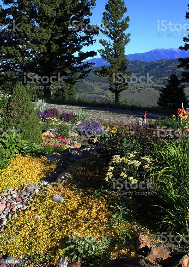 Flower Garden - Bridger Mountains stock photo