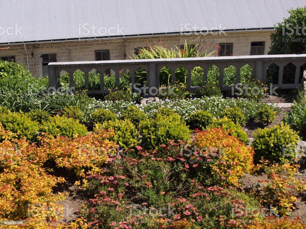 Flower Garden in bloom stock photo
