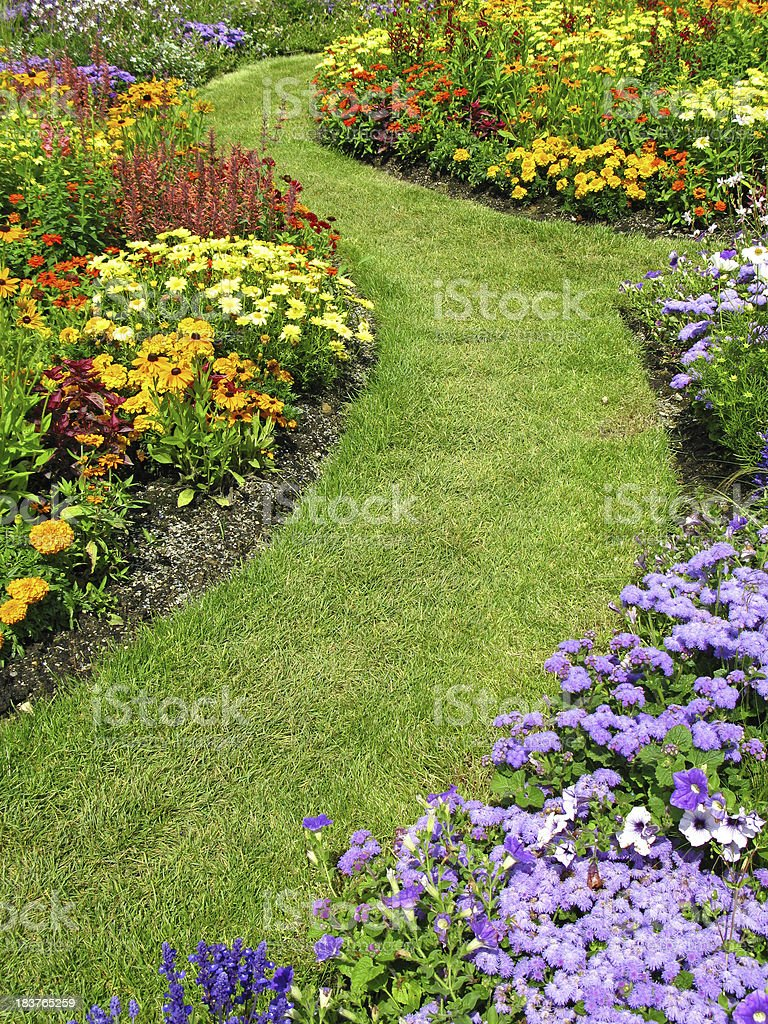 Flower garden in summer royalty-free stock photo