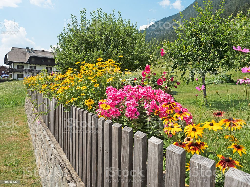 Flower garden in summer stock photo
