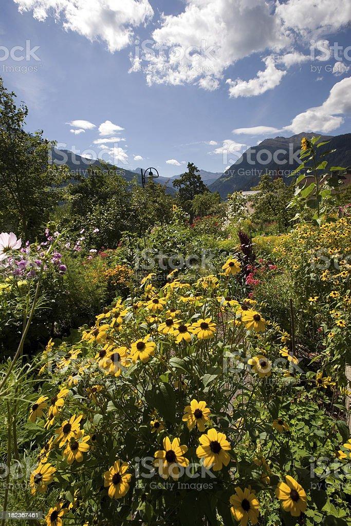 flower garden in tirol royalty-free stock photo