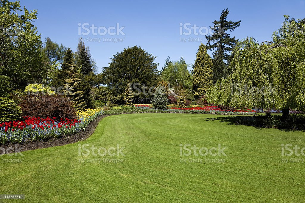 Flower Garden stock photo