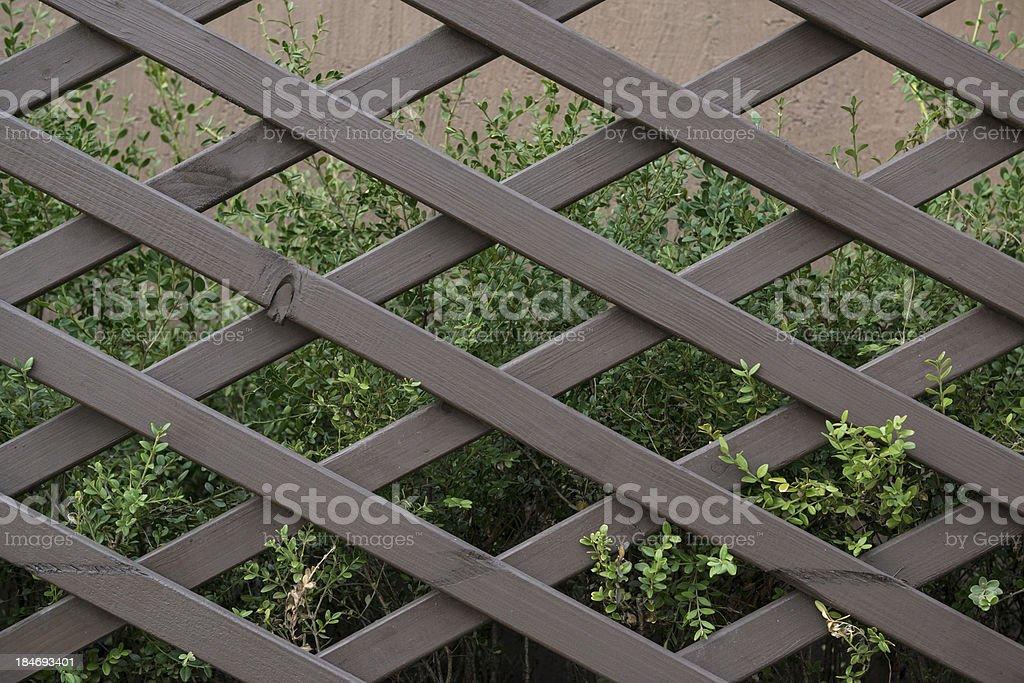 flower garden Wooden wall stock photo