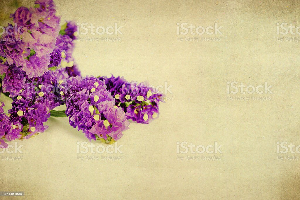 Flower grunge paper royalty-free stock photo