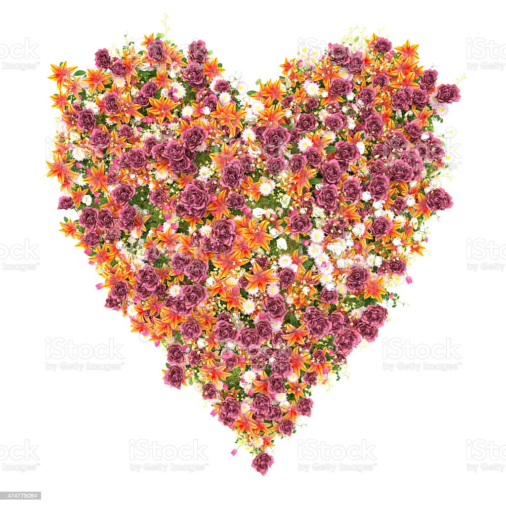 Flower Heart on white stock photo