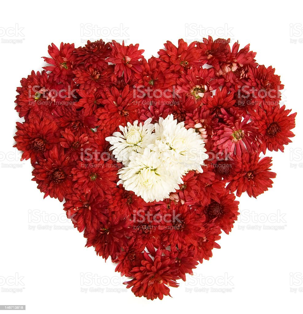 flower heart royalty-free stock photo