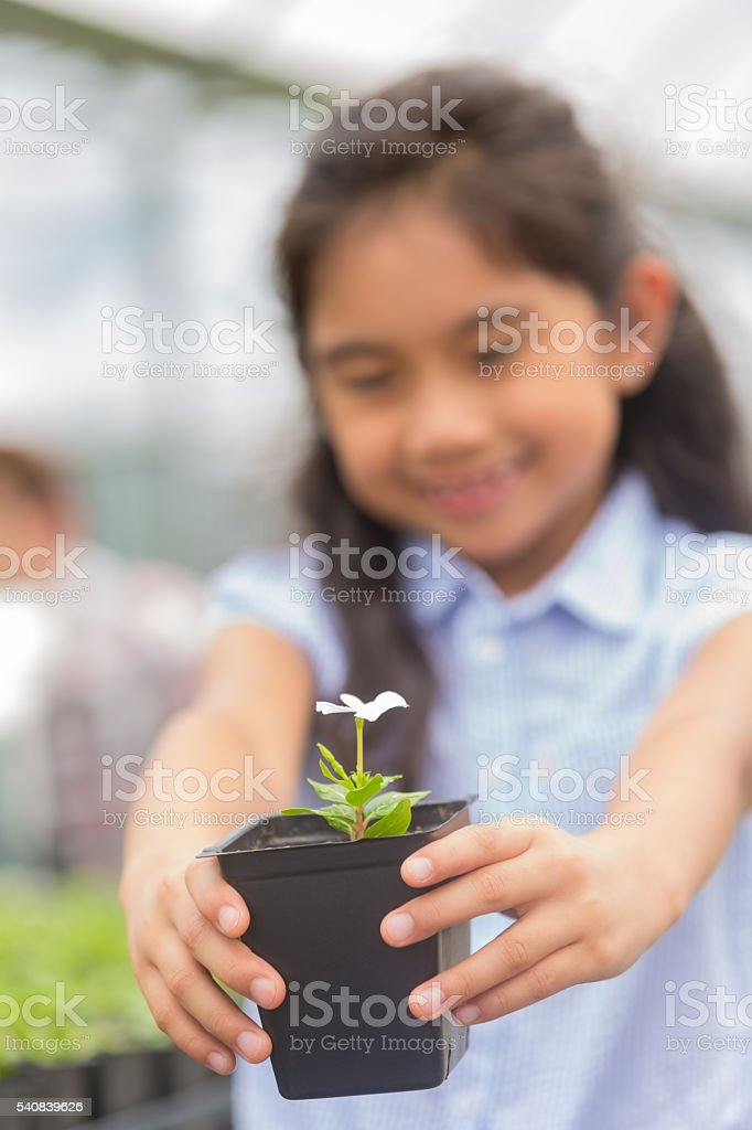 Flower held by happy girl stock photo