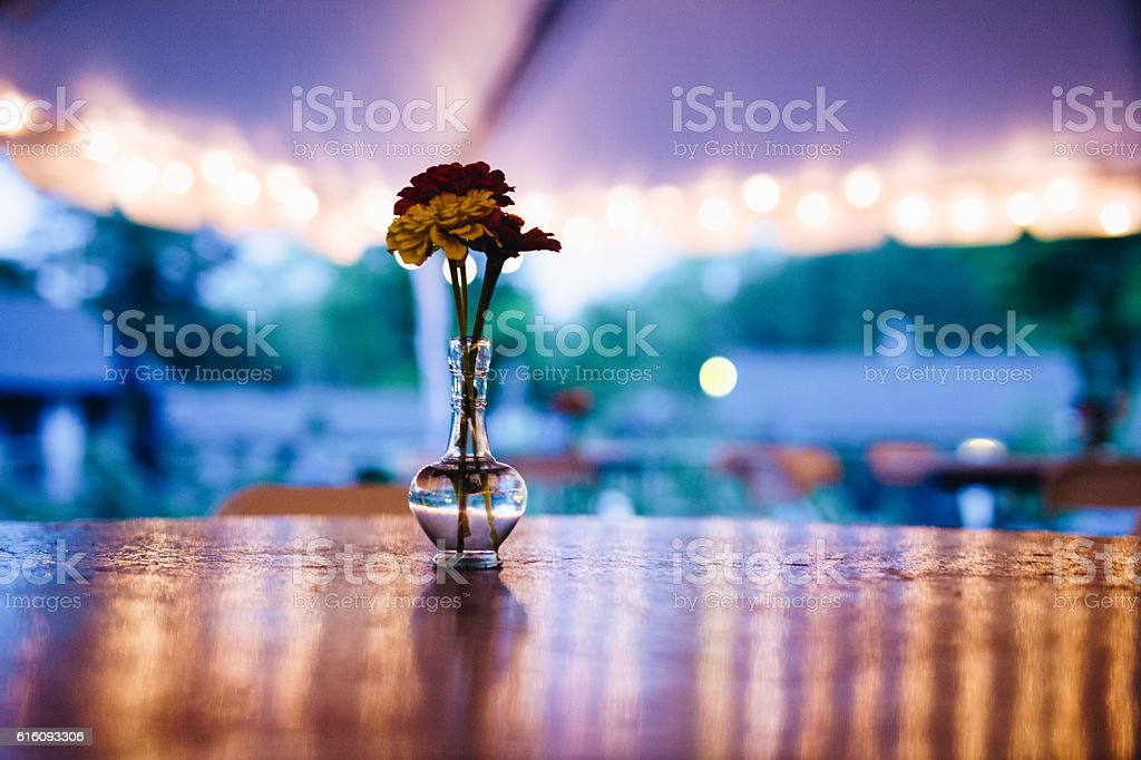 Flower in a clear vase stock photo