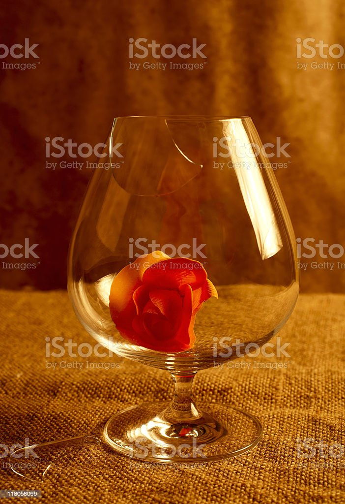 flower in the glass royalty-free stock photo