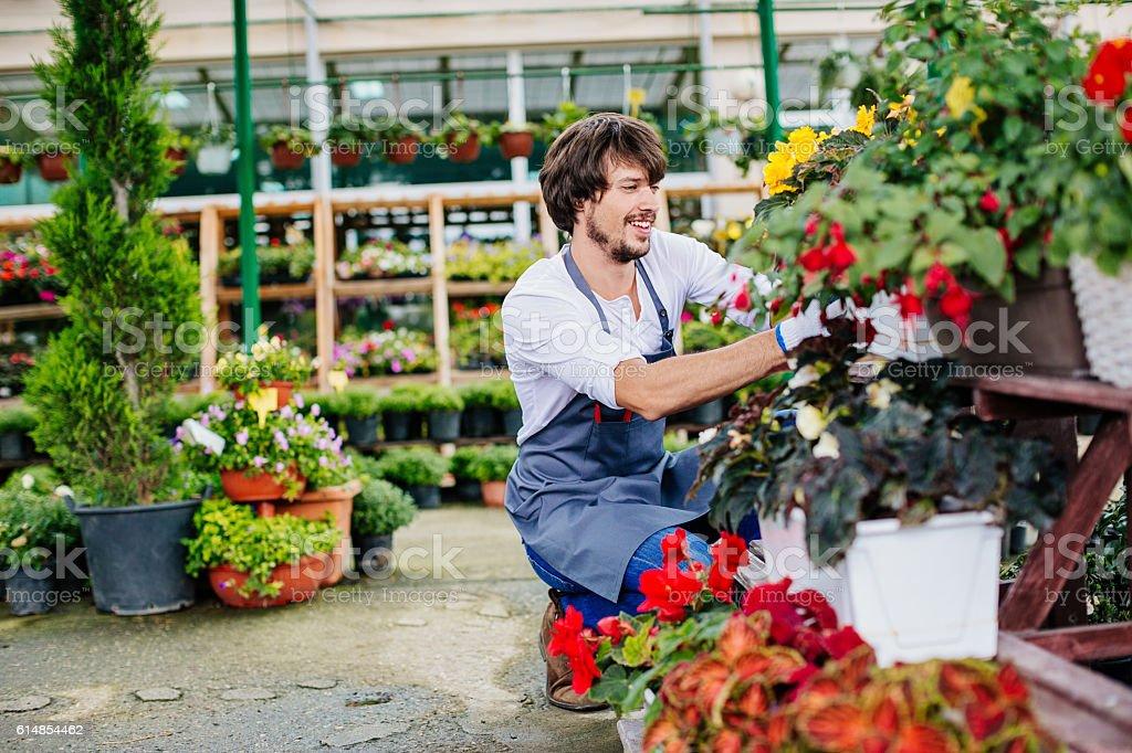 Flower Industry stock photo