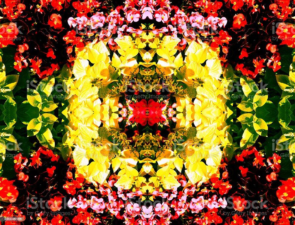Flower Kaliedoscope royalty-free stock photo