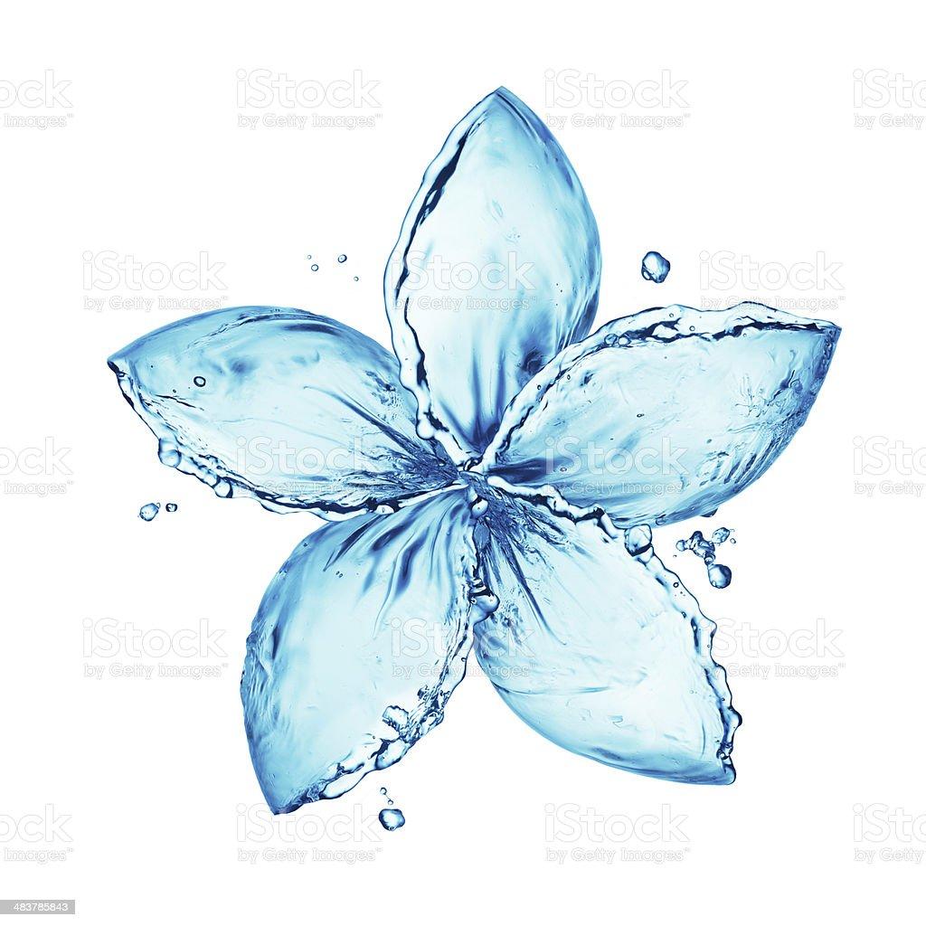 flower made of water splash stock photo