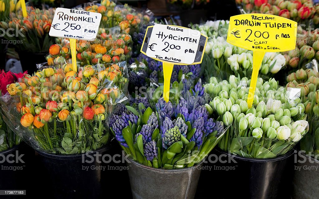 Flower Market in Amsterdam royalty-free stock photo