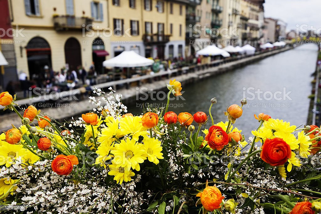 Flower Market - Milano. Color Image royalty-free stock photo