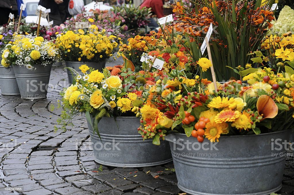 flower market series royalty-free stock photo