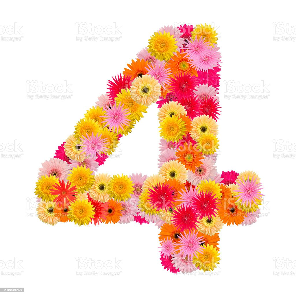 flower numberfour. stock photo