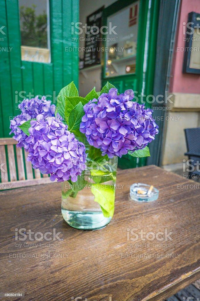 Flower of Asturias stock photo