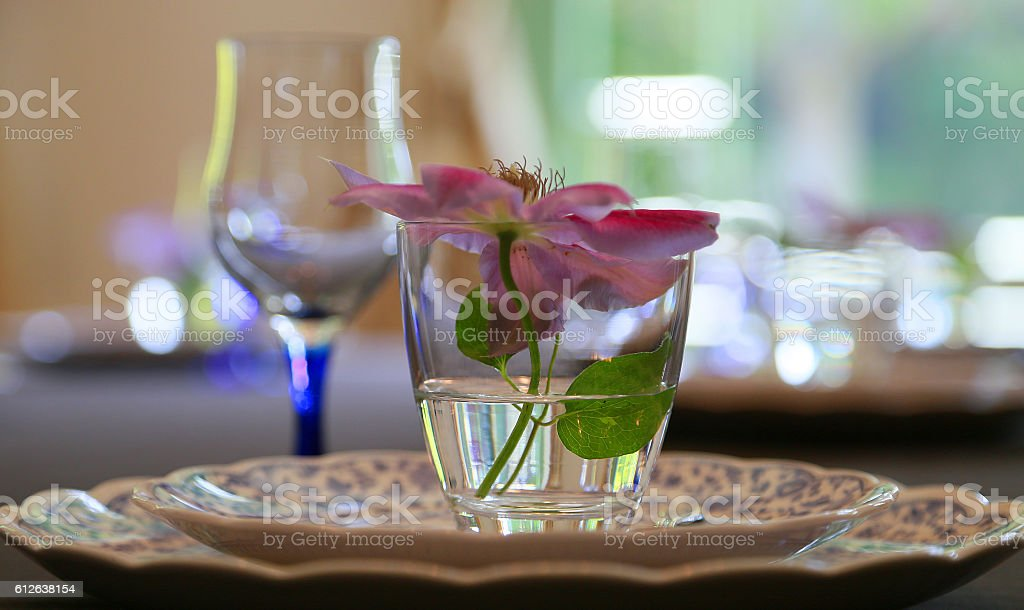 Flower of the glass foto de stock libre de derechos