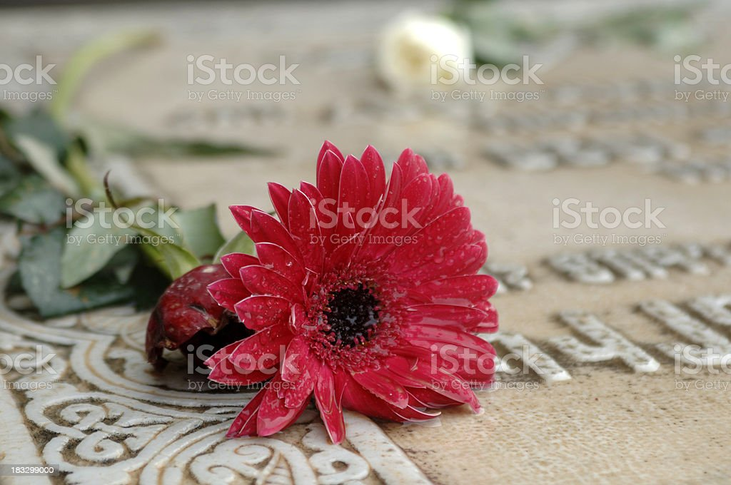 Flower on a grave royalty-free stock photo