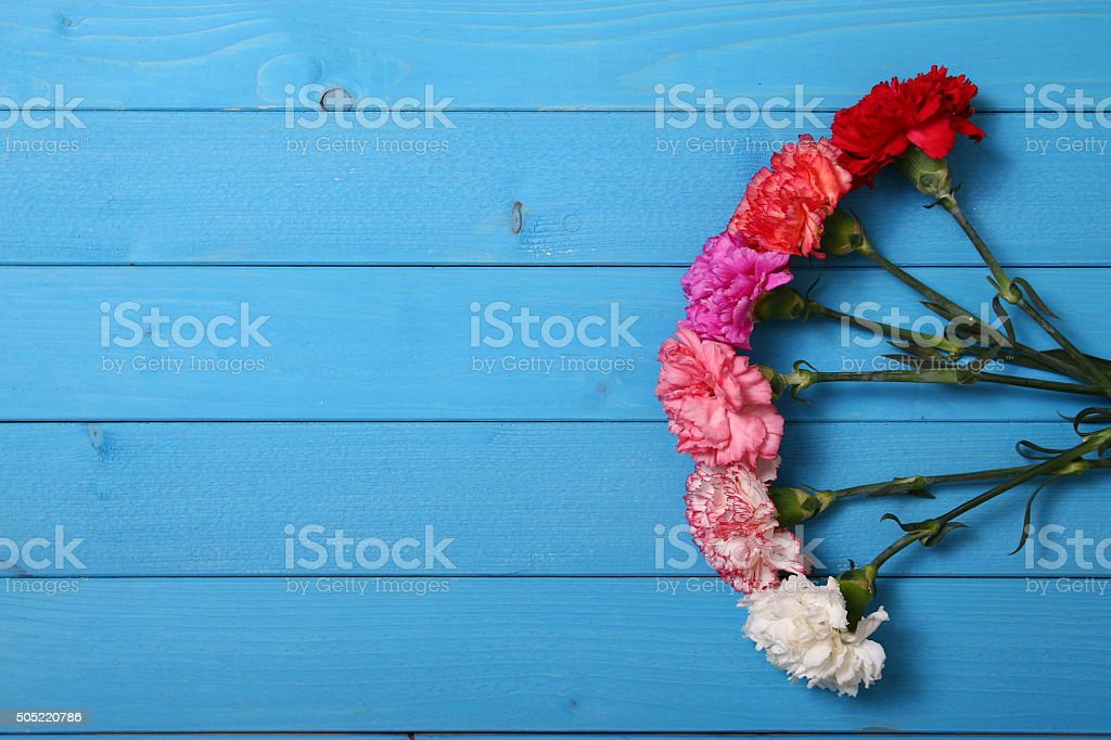 flower on blue wood background stock photo