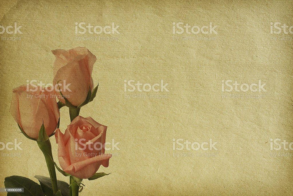 flower paper textures. stock photo